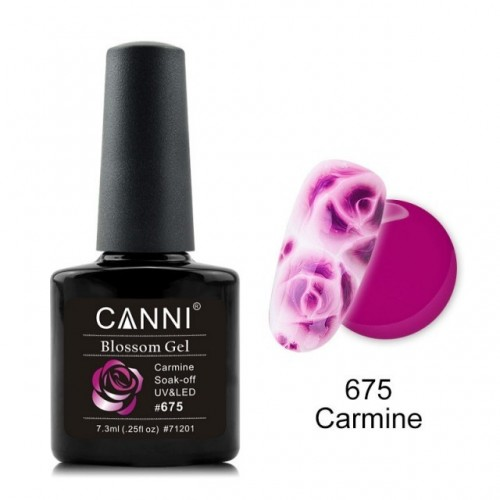 Premium Top Lux Shine Hollywood HOLLYWOOD PERFECT NAILS