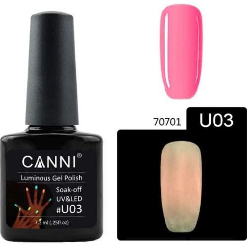 Dezinfectant Antiseptix cu Pulverizator 250 ml