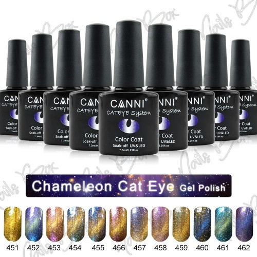 Rola Sabloane Constructie Profesionale Clear PVC -Hollywood Perfect Nails